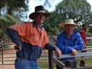 LIVESTOCK producers take a sticky beak at the saleyards for the weekly cattle and sheep sales.
