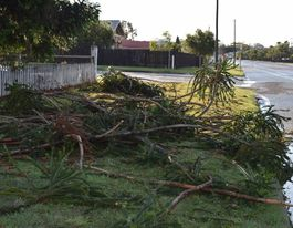Warwick residents left to dispose of their own storm debris