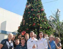 Festive cheer hits the CBD with nine metre Christmas tree