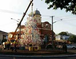 Lismore gets a shiny (and thrifty) new tree for Christmas
