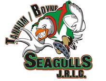 Tannum Boyne Seagulls Junior Rugby League Sign On Day