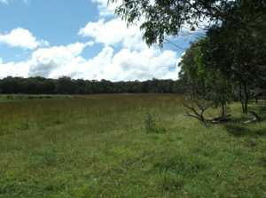 Hard to go past this country...prime grazing land with magnificent homesites at Liston, with a choice of 2 adjoining blocks:- Lot 414 has an area of 54 hectares, is fully fenced, with a running creek and dam, approximately half cleared and is for sale at $295,000. Lot 415 ...