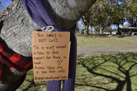 The Amazing Reason Why Youll See Scarves Tied Around Trees This Winter