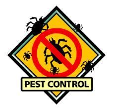 Fezzy's Pest Control & Maintenance