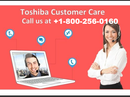 <p>When seeking for Toshiba Laptop