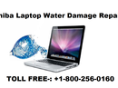 <p>Are you looking for support service to get the Toshiba Laptop Water Damage Repair ? Call on our toll-free number +1-800-256-0160 and avail the best of support service to Toshiba Water Damage. Guaranteed and reliable support service is provided to you any hour of day and night. It all depends on you at what time you are comfortable. Efficient and consistent support service is offered to you for giving you smooth working with full features and functions being utilized fully. Offered services are implemented under the guidance of qualified, skilled, capable and talented technicians. As the tech experts are available around-the-clock you can have them directly via calling on toll-free number.</p> <p>Offered Support Services to Toshiba Laptop Water Damage tech issues include:</p> <p>· Support for drying all the components</p> <p>· Support for water reached inside screen</p> <p>· Support for easily removal of components detachable</p> <p>· Support for water reaching hard disk and hence damaging</p> <p>· Support from friendly tech experts</p> <p>Communicate with tech engineers for availing the best of support service of fixing the Toshiba Laptop water damage technical issues. You can have live chat or drop an email to customer support email id address. Have the support service at your doorstep via connecting with us. Feel free to connect any hour of day and night as services are made available 24*7 around-the-clock. No more delay now to get the technical issues resolved only need to pick up your phone and dial our toll-free number to have support for fixing the Laptop water damage.</p>