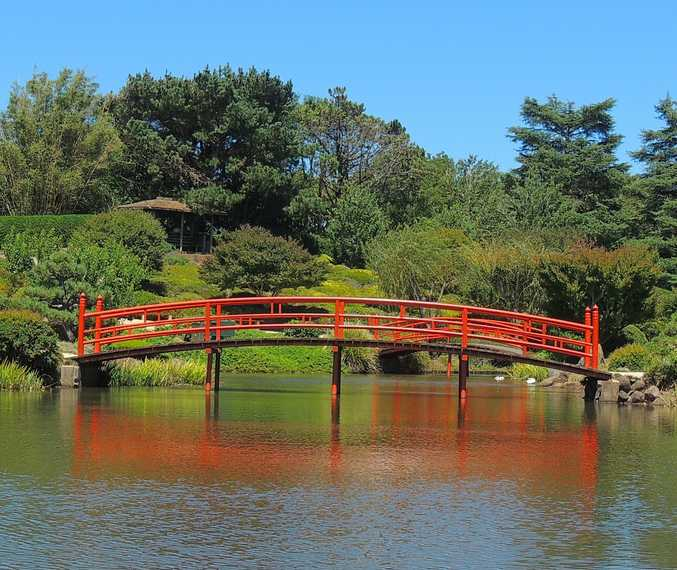 One way to stay cool in Toowoomba could be by finding some shad in one of the regions many gardens, such as the Japanese Garden.