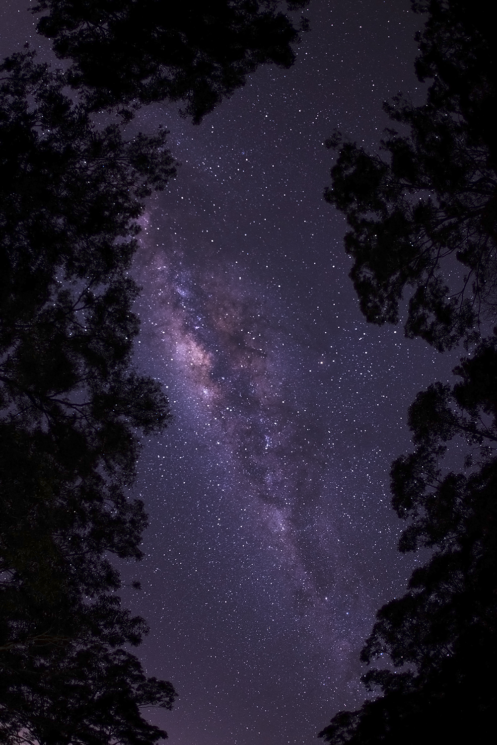 Clear Summer Skies Stargazing. Shot by Luke G Smith - User Contributed