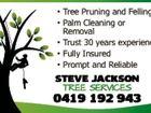 Steve Jackson Tree Services