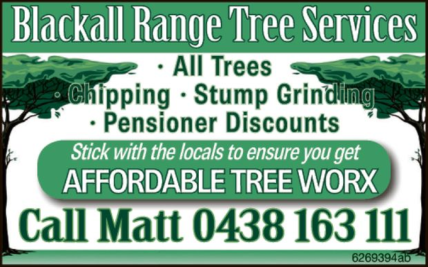 All Trees  Chipping  Stump Grinding  20% Pensioner Discount   Stick...