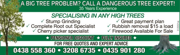 CALL A DANGEROUS TREE EXPERT! 