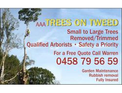 *Small to large Trees * Removed / Trimmed