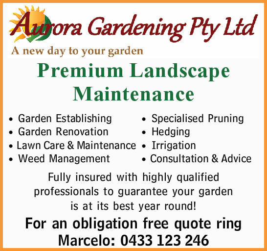 A new day to your garden