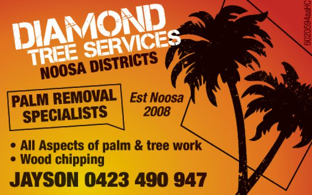 Noosa District   Palm Removal Speialists   Established 2008   All Aspects of Plam and...