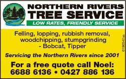 NORTHERN RIVERS TREE SERVICE Felling, lopping, rubbish removal, woodchipping, stumpgrinding - Bobcat...
