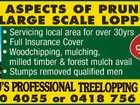 FALKNAU'S PROFESSIONAL TREELOPPING SERVICE