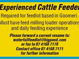 Experienced Cattle Feeder Required for feedlot based in Goomeri.   Must have feed milling loader operations and daily feeding experience Please forward a current resume to: waterfallfeedlot@bigpond.com or fax to 07 4168 7178   Contact office 07 4168 7171 for further information