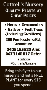 Cottrell's Nursery QUALITY PLANTS AT CHEAP PRICES * Herbs * Ornamentals * Natives * Fruit Trees...
