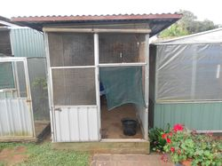 Large colourbond aviaries, good condition