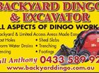 BACKYARD DINGO & EXCAVATOR