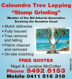 Caloundra Tree Lopping 