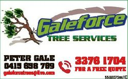 PETER GALE 0415 658 769 galeforcetrees@live.com 3376 1704 FOR A FREE QUOTE 5588075aaHC