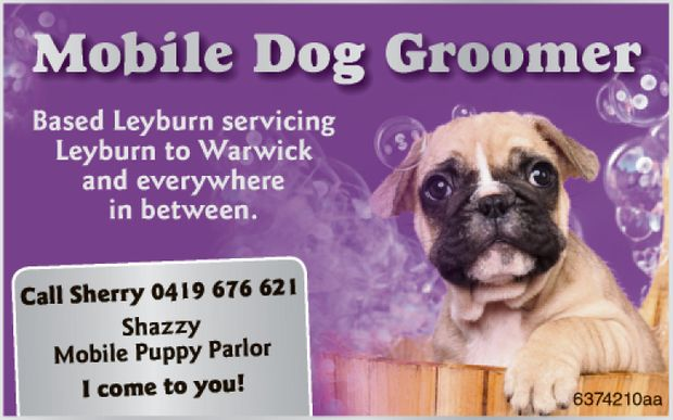 Mobile Dog Groomer