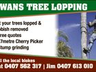 DWANS TREE LOPPING