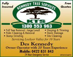 Fully Insured Free Quotes TREE SERV I CE NEDY S KEN KTS 1300 553 963 * Full Tree Removal - large/sma...