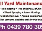 All Yard Maintenance