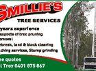 Smillie's Tree Services