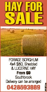 HAY FOR SALE   FORAGE SORGHUM 4x4 $60, Shedded   & LUCERNE HAY From $9   Southbro...