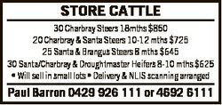 STORE CATTLE 30 Charbray Steers 18mths $850 20 Charbray & Santa Steers 10-12 mths $725 25 Santa...