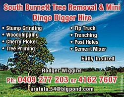 South Burnett Tree Removal & Mini Dingo Digger Hire * Stump Grinding * Woodchipping * Cherry Pic...