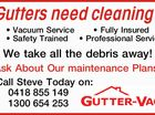 Gutters need cleaning?