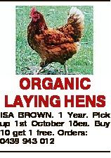 ORGANIC LAYING HENS ISA BROWN. 1 Year. Pick up 1st October 15ea. Buy 10 get 1 free. Orders: 0439 943...