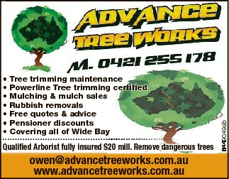 Tree trimming maintenance