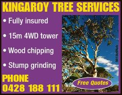 KINGAROY TREE SERVICES * Fully insured 5613059ab * 15m 4WD tower * Wood chipping * Stump grinding PH...
