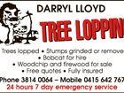 Darryl Lloyd Treelopping