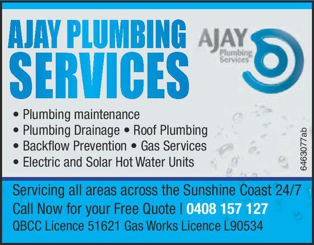 Plumbing maintenance  Plumbing Drainage •  Roof Plumbing  Bac...
