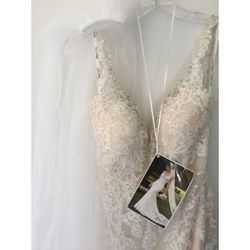 Gorgeous sparkling Ivory lace over cafè coloured matte satin wedding dress. Size 10 Au fitted. Perfe...