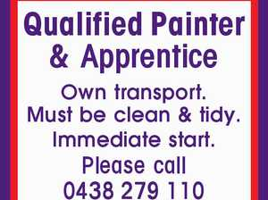 Qualified Painter & Apprentice