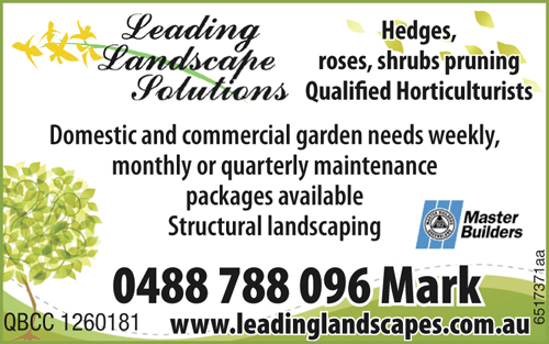 Hedges, roses, shrubs pruning