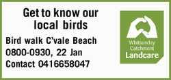 Bird walk C'vale Beach 0800-0930, 22 Jan Contact 0416658047
