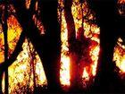 Burringbar fire flares up again