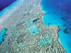 Acidification 'likely to impact reef'