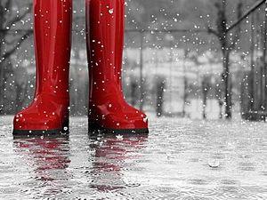 Rainy day activities on the Sunshine Coast
