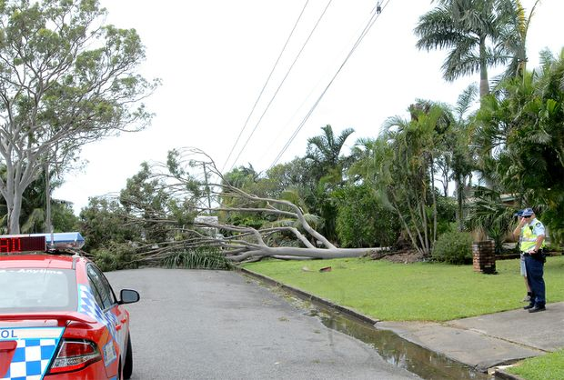 Power lines in South Mackay are down following Cyclone Ului.