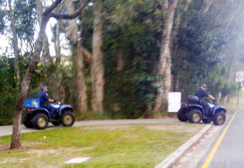 Police ride quad bikes on a Noosa road without helmets.