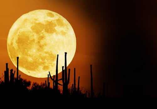 Astronomer Dave Reneke says the moon on March 19 will be at its closest to the Earth since 1992. It will appear slightly bigger and brighter, but will not bring the chaos some fear mongers have predicted.